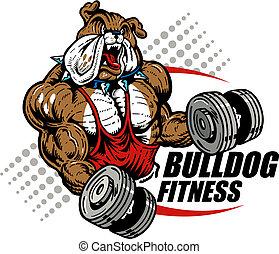 bulldog with dumbbells