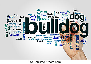 Bulldog word cloud on grey background