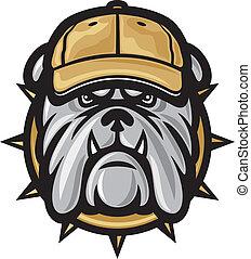 bulldogg, huvud, mössa, baseball