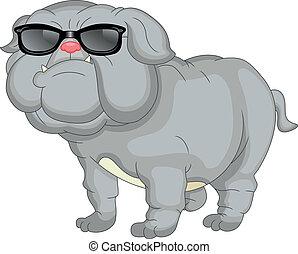 bulldogg, söt, tecknad film, engelsk