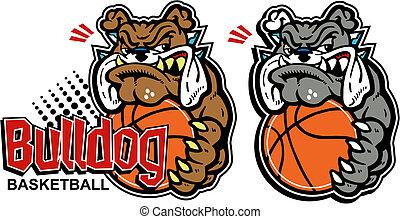 bulldogge, basketball, karikatur