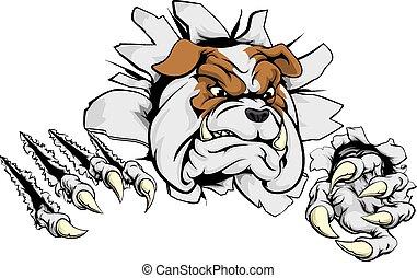 bulldogge, durch, zerreißen, hintergrund