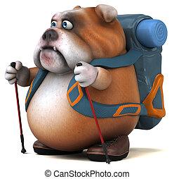 bulldogge, karikatur, spaß, wanderer, zeichen