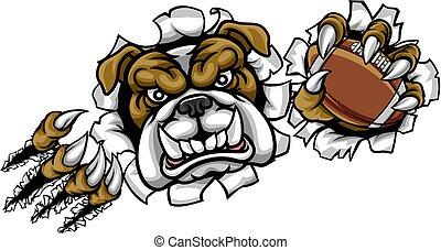 bulldogge, sport, amerikanische , fußball, maskottchen