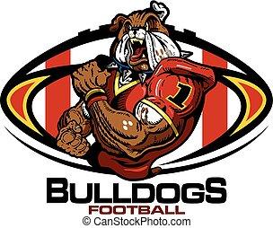 bulldogs football - muscular bulldogs football player team...