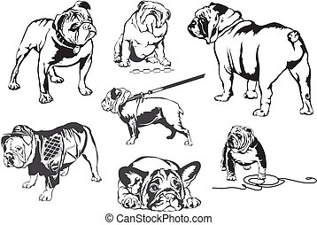 Bulldogs team design with mean bulldog mascot drooling.