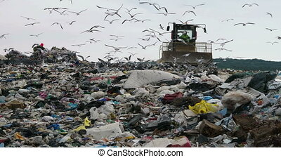 Bulldozer working in landfill - Bulldozer flattening garbage...