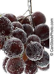 bulles, closeup, raisins