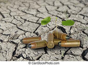 Bullets on bare land