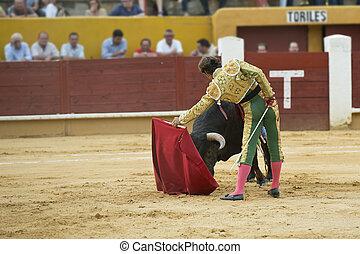 Bullfighter fighting.