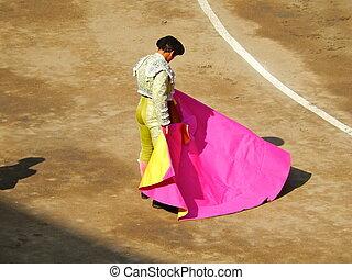 Bullfighter in the ring. brave matador