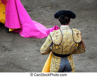 Bullfighter in the ring.