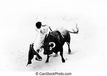 Bullfighting - Bullfigting in bullring Las Ventas, Madrid,...