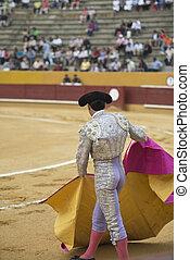 Bullfighting.