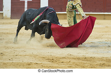 Typical Spanish bullfight in a traditional bullring