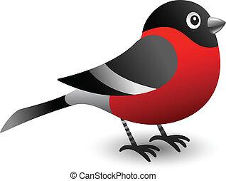 Bullfinch bird illustration for your christmas design.