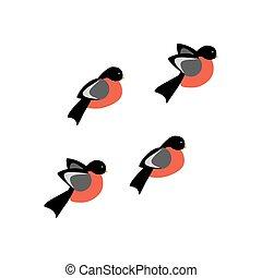 Bullfinch bird illustration on the white background. Vector ...