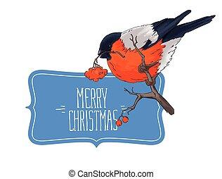 Bullfinch bird winter illustration seamless pattern vector...