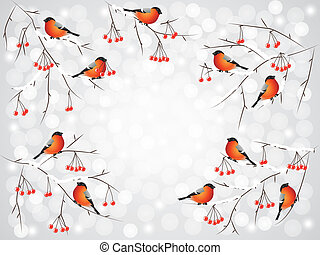 Bullfinch birds on branches winter background