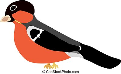 Bullfinch - On this illustration is bird, his name is...