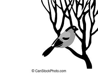 bullfinch silhouette on wood branch, vector illustration