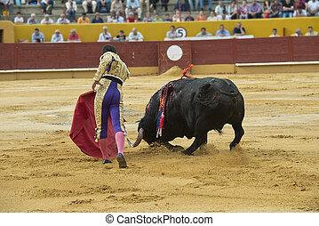 Bulllfighter in action.