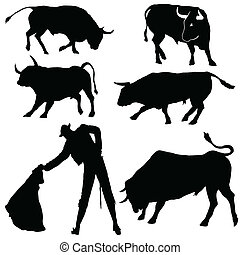 Bulls and bullfighter