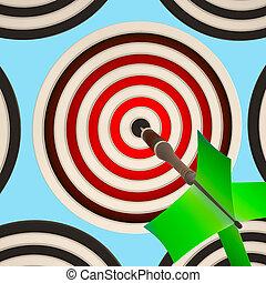 Bulls eye Target Shows Focused Successful Aim