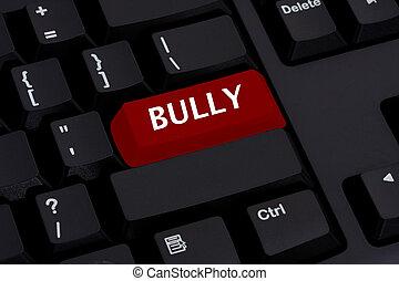bullying, на, интернет