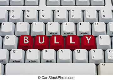 Bullying on the Internet - Computer keyboard key displaying...