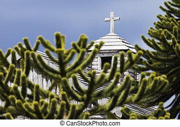 bulnes, Fortaleza,  araucaria,  chile, iglesia