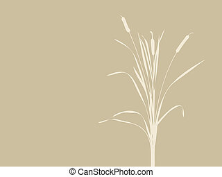 bulrush silhouette on brown background, vector illustration