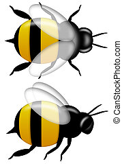 Bumble Bee Top and Side View Isolated on White - Bumble Bee...