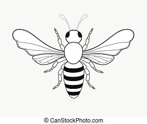 Bumblebee Drawing Vector Illustration