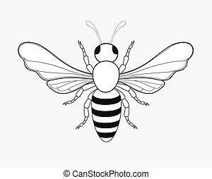Bumblebee Drawing Vector Illustration