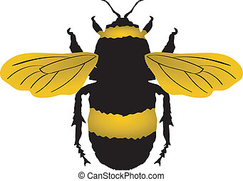 bumblebee clipart and stock illustrations 4 141 bumblebee vector rh canstockphoto com bumble bee clipart free bumble bee clip art black and white