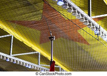 Bumper car thrill ride ceiling