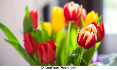 Bunch bouquet of colourful tulips