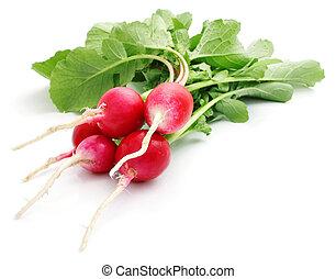 bunch fresh radish isolated on white background