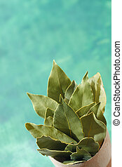 Bunch of a dried laurel leaves