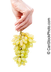 bunch of a green grapes in hand of the woman