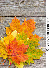 Bunch of autumnal leaves on the planks