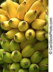 Bunch of bananas, background