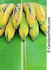 Bunch of bananas on banana leaves
