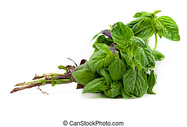 bunch of basil