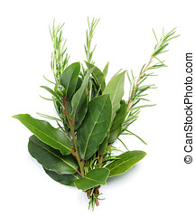 Bunch of bay leaves and rosemary
