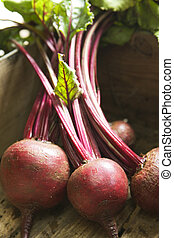 Bunch of beetroot - Freshly picked beetroot in wooden box