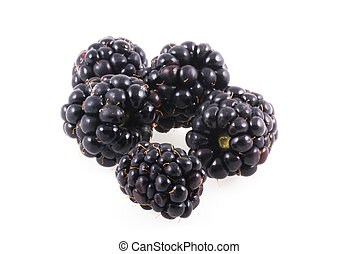Blackberries isolated on a white background.