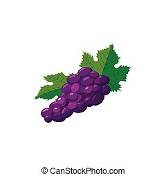 Bunch of blue grapes icon, cartoon style