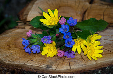 bunch of blue pink yellow flowers